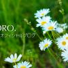 小林麻央さんのブログ「まお日記」を読みました。
